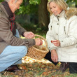 Senior man and senior woman collecting chestnuts — Stockfoto