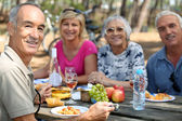 Family eating picnic in the forest — Stock Photo