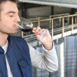 Male wine producer - Stock Photo