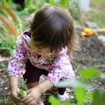A young gardener — Stock Photo #9214126