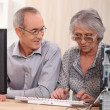 Stock Photo: Elderly couple learning computer skills
