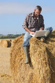 Farmer with a laptop on a haystack — Stock Photo