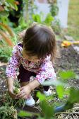 A young gardener — Stock Photo