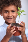 Little boy with a young oak tree — Stock Photo