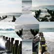 Moss-ridden supports being eroded by the ocean — Stock Photo
