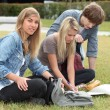 Teenagers sitting on grass — Stock Photo #9287204