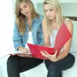 Stock Photo: Girls reviewing notes