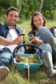Grapepickers, наслаждаясь бокалом вина — Стоковое фото