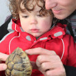 Father and son holding turtle - Stock Photo