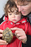 Father and son holding turtle — Stock Photo