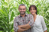 Couple in front of corn plants — Stock Photo