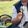 Vintner with glass in field — Stock Photo #9300660