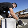 Stock Photo: Roofer at work