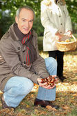 Middle-aged couple gathering chestnuts — Stock Photo