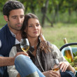 Couple with wine glass in the field — Stock Photo