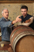 Two men checking quality of wine — Stock Photo