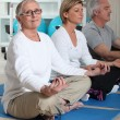 Seniors practicing yoga — Stock Photo