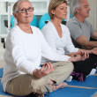 Seniors practicing yoga — Stock Photo #9320435