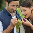 Winegrowers with bunch of grapes — Stock Photo #9322739