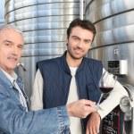 uomini in un moderno impianto di vinificazione — Foto Stock