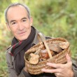 Senior man with a basket of mushrooms - Stock Photo