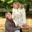 Senior couple picking chestnuts — Stock Photo