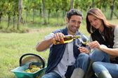 Winegrowers tasting wine — Stock Photo