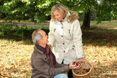 Senior couple picking chestnuts — Stock Photo