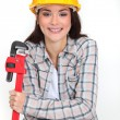 Womholding adjustable wrench — Stock Photo #9578469