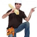 Portrait of carpenter isolated pointing sidewards isolated on white — Stock Photo #9581137