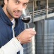 Man smelling aroma of wine — Stock Photo