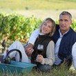 Stock Photo: Couple sitting in front of vineyard