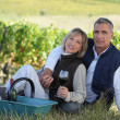 Couple sitting in front of vineyard — Stock Photo #9584329