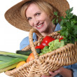 Stock Photo: Womwith basket of produce