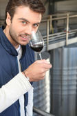 Man smelling aroma of wine — Foto Stock