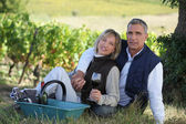 Couple sitting in front of vineyard — Stock Photo