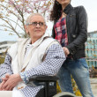Pushing grandma in wheelchair — Foto de Stock