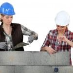 dwa mason kobiet pracujących na ścianie — Zdjęcie stockowe