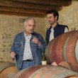 Stock Photo: Winemakers in cellar