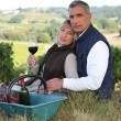 Couple drinking wine by vineyard — Stock Photo