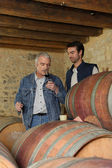 Winemakers in the cellar — Stock Photo