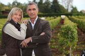 Couple in front of vineyard — Stock Photo