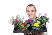 Jardinero con plantas — Foto de Stock