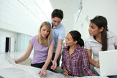 Architects consulting a blueprint — Stock Photo