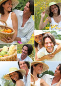 Summery couple in a meadow montage — Stock Photo