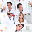 Snapshots of male and female laboratory technicians - Stock Photo