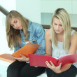 Stockfoto: Last minute studying before exam