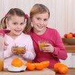 Royalty-Free Stock Photo: Two sisters drinking orange juice in kitchen