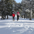 Couple cross-country skiing through woods — Photo