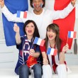 French football fans — Stock Photo #9827147
